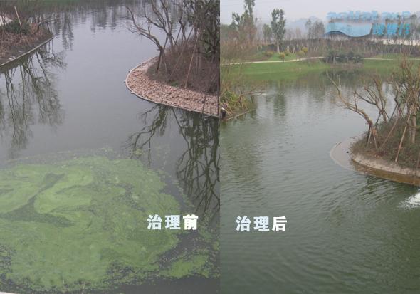 地表水净化治理